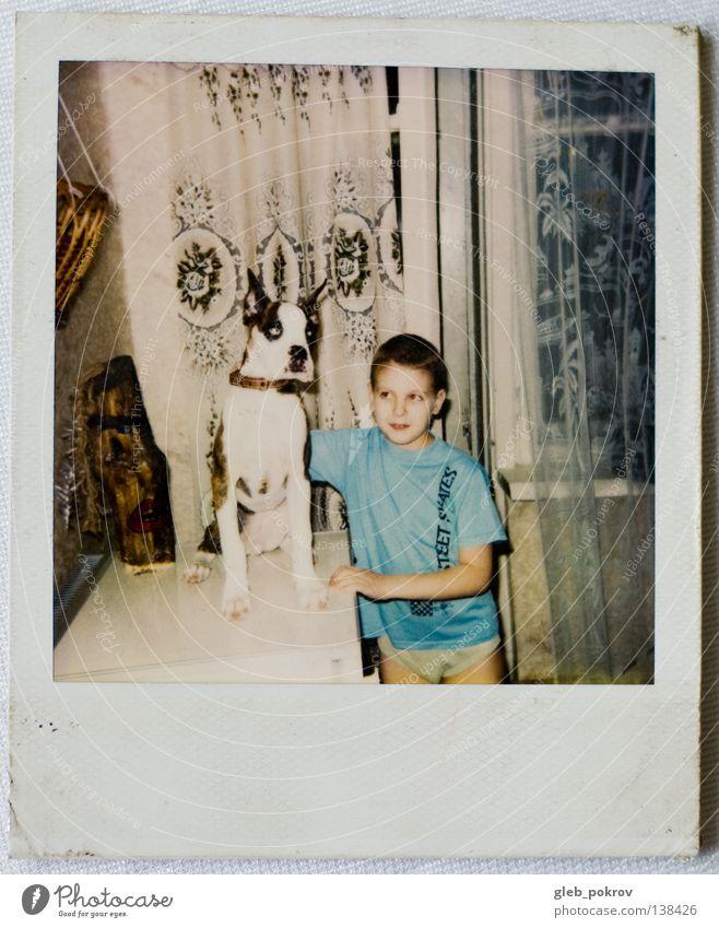 Polaroid part II Porträt Mensch retro Säugetier Wohnzimmer dog home boy dreams russia half lengh 6x6 window Mauer
