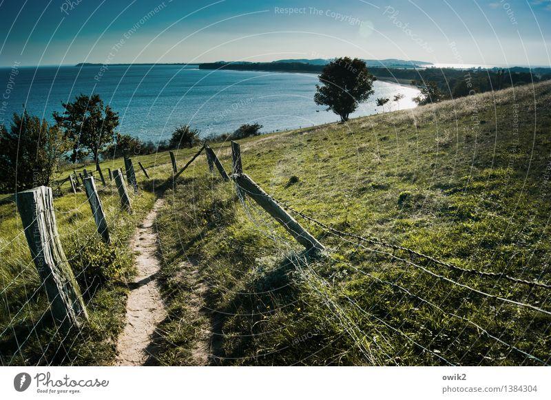 Mönchgut, Rügen Umwelt Natur Landschaft Pflanze Urelemente Wasser Wolkenloser Himmel Horizont Klima Wetter Schönes Wetter Baum Gras Wiese Hügel Küste Ostsee