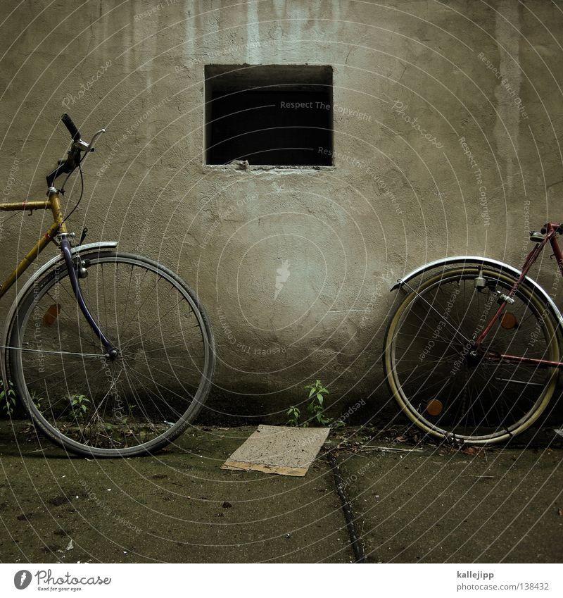 rad an rad Fahrrad Oldtimer Rad Hinterhof Gitter Einfahrt Abstellplatz Fahrradweg Studium Billig ökologisch Klimaschutz Gummi Silhouette Ständer Mauer Rücklicht