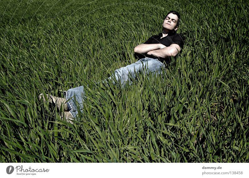 chillout Mann Kerl Gras Feld Sommer Erholung Hose Hemd dunkel grün schlafen Sonnenbad Luft frisch unberührt Jeanshose hell Gesicht face skin Haut Natur