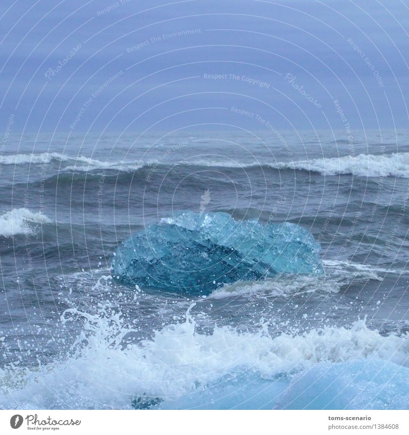 Eistopas Natur blau schön Wasser Meer Landschaft ruhig kalt natürlich Küste glänzend Wellen Kraft ästhetisch Urelemente