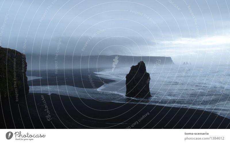 Dunkle Begegnung Natur Landschaft Sand Wasser Wetter Nebel Wellen Küste Bucht Meer Nordatlantik Insel Island dunkel Bewegung Einsamkeit Horizont