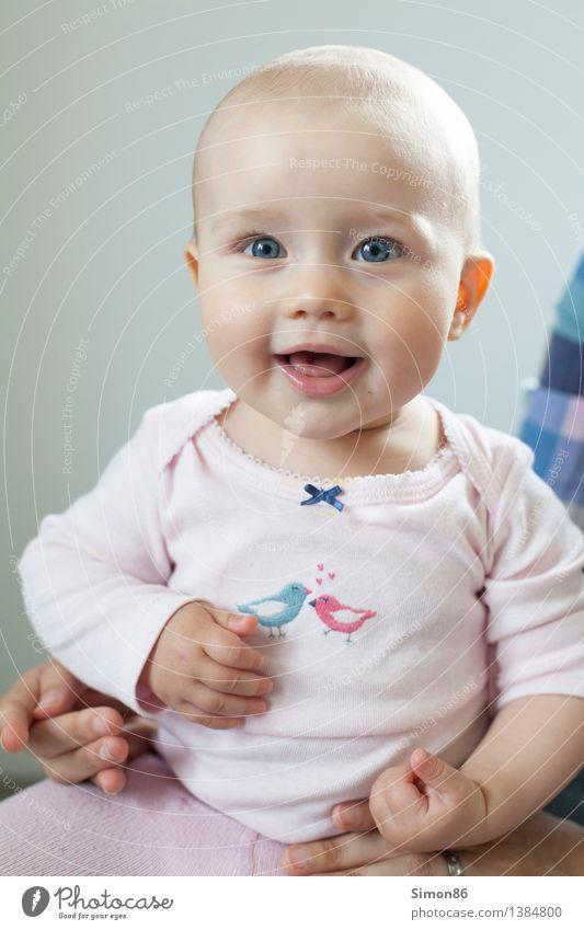 Babygirl Mensch feminin Kind Kleinkind Mädchen 1 0-12 Monate Fröhlichkeit schön Neugier niedlich positiv Gefühle Stimmung Glück Zufriedenheit Jugendliche