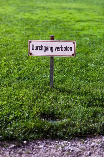 Verboten! alt grün weiß schwarz Wiese Gras Wege & Pfade Garten Park Schilder & Markierungen Hinweisschild eckig Personenverkehr Kindererziehung achtsam