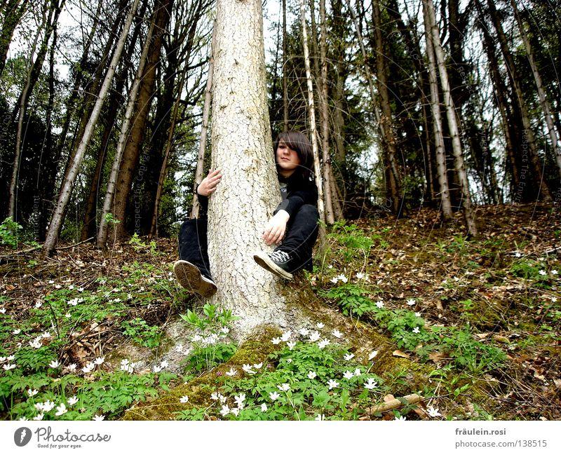 gediegen chillt sie... Baum Baumrinde Frühling Wald mögen gemütlich Blume steil Chucks Tanne Blatt schlechtes Wetter Schatten lässig Wunsch Junge Frau Freude