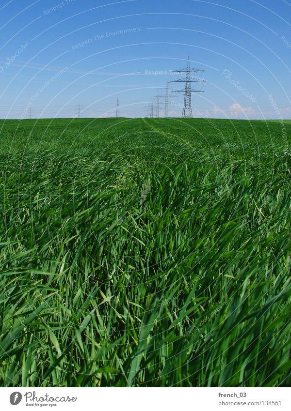 Überall Strom Wolken Feld Hochspannungsleitung Elektrizität Strommast Stahl Sachsen-Anhalt Horizont Gras Himmel Sturm Landschaft Natur Elektrisches Gerät