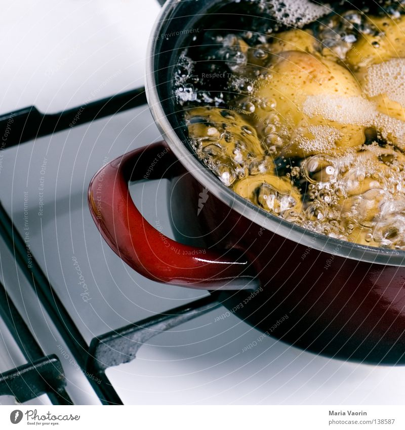Alleine Kochen ist doof Wasser Wärme Lebensmittel Kochen & Garen & Backen Küche Physik Gastronomie heiß Mahlzeit Abendessen Mittagessen Topf Herd & Backofen