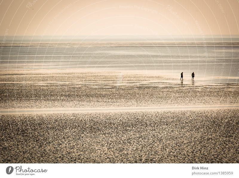 Wattenmeer bei Friedrichskoog (SH) Mensch Natur Ferien & Urlaub & Reisen Sommer Wasser Erholung Meer Landschaft Ferne Reisefotografie Umwelt Küste Freiheit