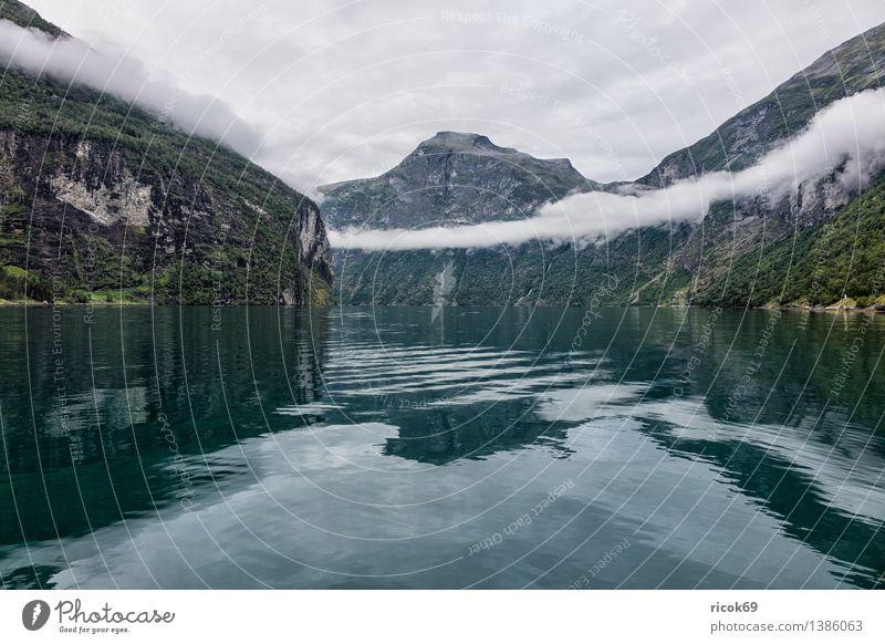 Blick auf den Geirangerfjord Erholung Ferien & Urlaub & Reisen Berge u. Gebirge Natur Landschaft Wasser Wolken Nebel Fjord Idylle Tourismus Norwegen
