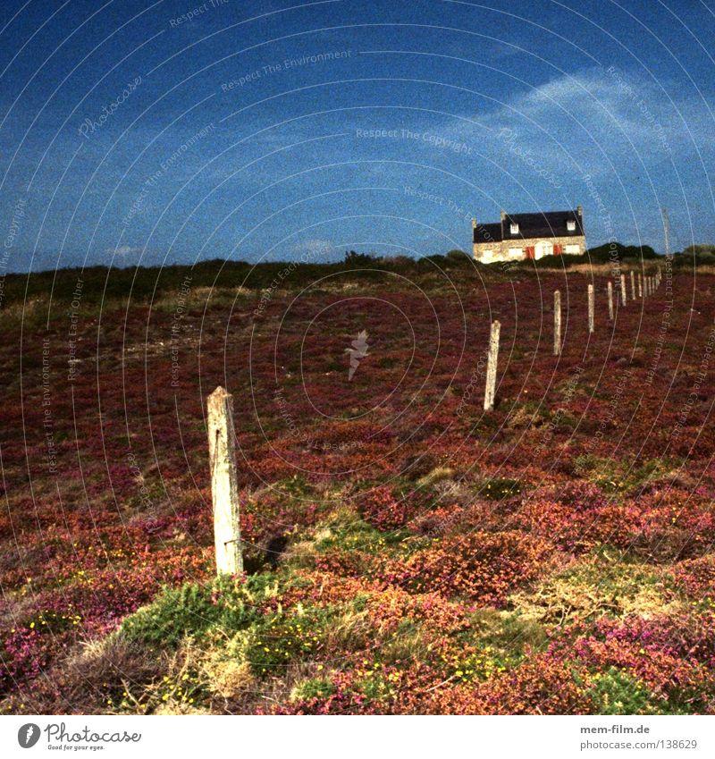 maison de vacances blau Sommer Ferien & Urlaub & Reisen Einsamkeit Landschaft Kraft Küste violett Frankreich Gewitter Zaun abgelegen Heide Abendsonne Ferienhaus