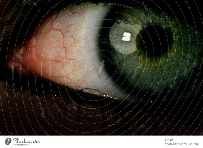 O_O Gefäße Ekel nah Makroaufnahme Pupille schwarz dunkel Lampe Reflexion & Spiegelung rund Nahaufnahme rot Konjunktivitis Kontaktlinse grün Auge anwidernd wäh