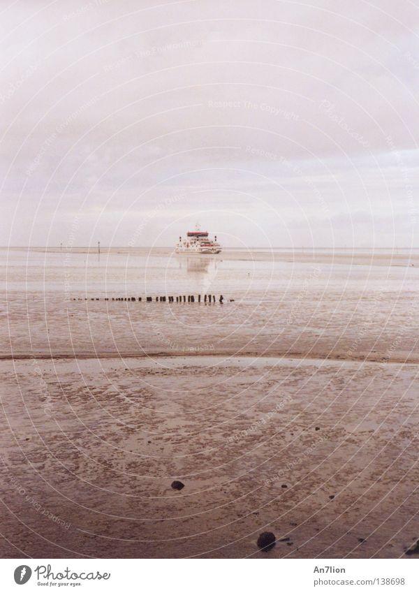 Wann kommt die Welle? Wasser Meer Ferne Wasserfahrzeug Fähre Abwasserkanal Ebbe Ameland