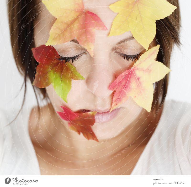 Herbstgesicht Mensch Frau Natur Jugendliche Pflanze Junge Frau rot Blatt Erwachsene Umwelt Auge gelb Gefühle feminin Kopf