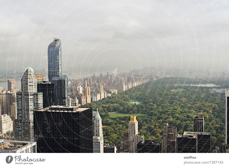 NYC |06 New York City Manhattan USA Stadt Stadtleben Hochhaus Skyline ästhetisch Freiheit Amerika Central Park Wahrzeichen Morgen Sonnenaufgang