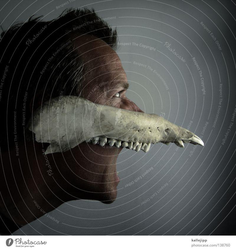 tollwut Mensch Natur Mann Tier Gesicht Angst Wildtier Tanzen Nase Wut Maske Gebiss Geister u. Gespenster Geruch schreien Gott