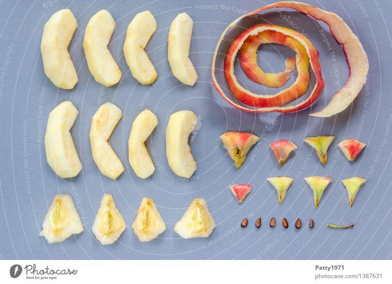 Wir basteln uns einen Apfel Lebensmittel Frucht Apfelschale Apfelstiel Kerngehäuse Ernährung Vegetarische Ernährung Diät frisch Gesundheit saftig genießen