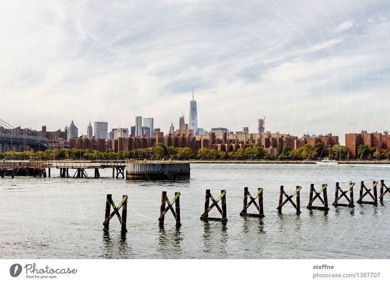 Großstadtidyll Natur Flussufer Manhattan New York City Brooklyn USA Stadt Skyline Haus Hochhaus Idylle East River Schönes Wetter Farbfoto Außenaufnahme