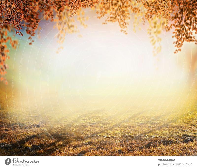 Herbst Natur Hintergrund ,verschwommen Pflanze Baum Blatt gelb Wiese Gras Stil Hintergrundbild Garten Park Design Nebel weich Rasen