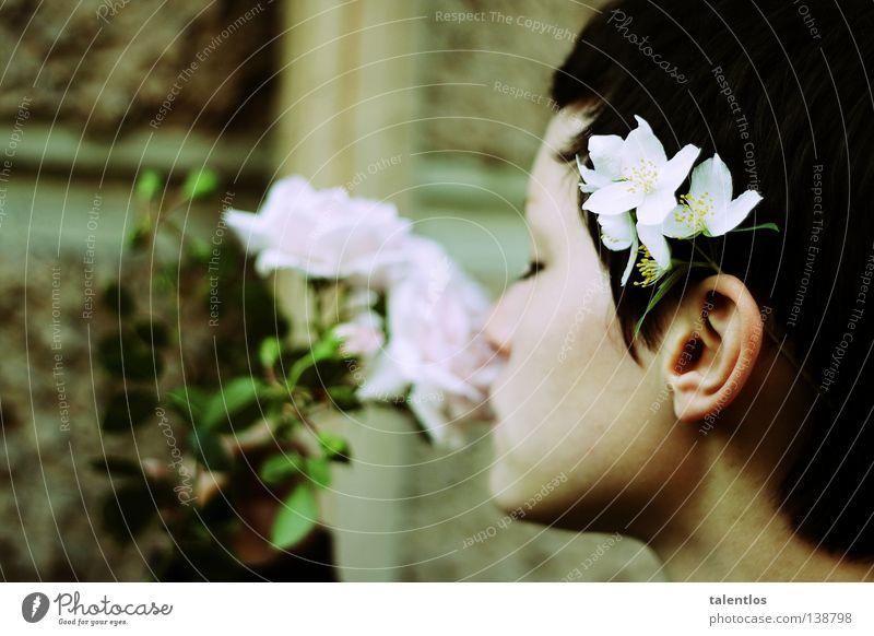 the fragrance of summer Frau weiß schön Sommer Blume springen Frühling rosa Rose Geruch Leichtigkeit
