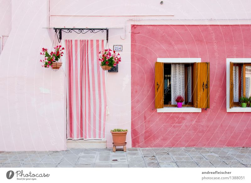 Viva Italia, 04 Ferien & Urlaub & Reisen Pflanze Sommer Haus Fenster Wand Mauer Glück braun Fassade rosa Häusliches Leben Tür Ausflug Italien Coolness