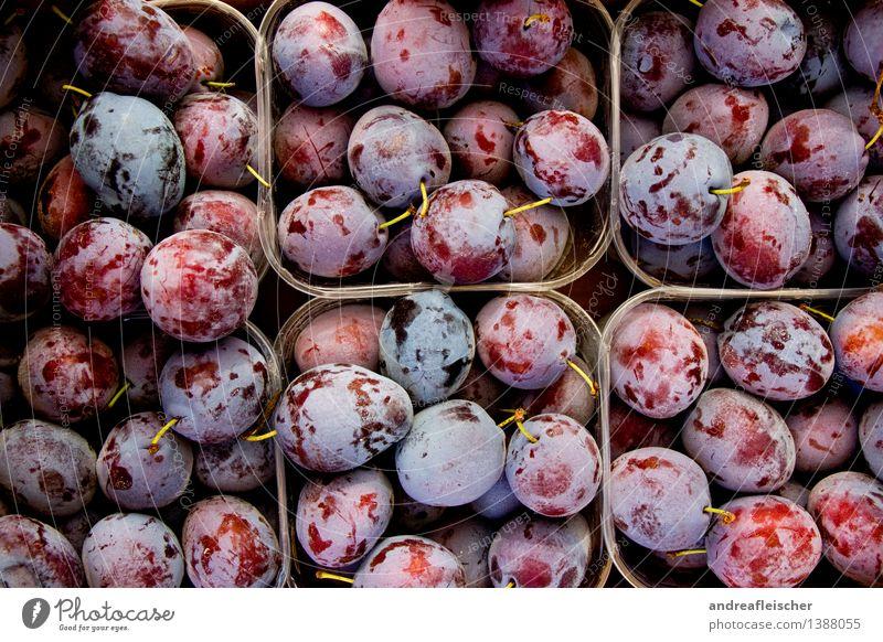 Pflaumen Lebensmittel Frucht Ernährung Bioprodukte Vegetarische Ernährung Natur bezahlen kaufen Fitness authentisch Gesundheit gut natürlich saftig sauer schön