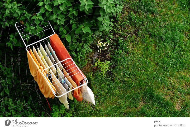 Hol die Wäsche rein! Sommer gelb Wiese Fenster oben Garten orange hoch frisch Rasen trocken hängen Wäsche waschen trocknen Haushalt