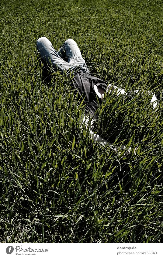 chillout III Mann Kerl Gras Feld Sommer Erholung Hose Hemd dunkel grün schlafen Sonnenbad Luft frisch unberührt Langeweile Jeanshose hell face skin Haut Natur