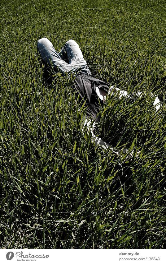 chillout III Mann Natur grün Sommer Erholung dunkel Gras Luft hell Feld Haut schlafen frisch Jeanshose Hose Hemd