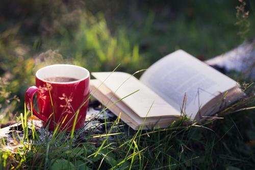 Zeit ist Glück. Getränk Heißgetränk Kaffee Tee Tasse Freizeit & Hobby lesen Natur Sommer Herbst Schönes Wetter Baum Wald Erholung Romantik ruhig Zufriedenheit