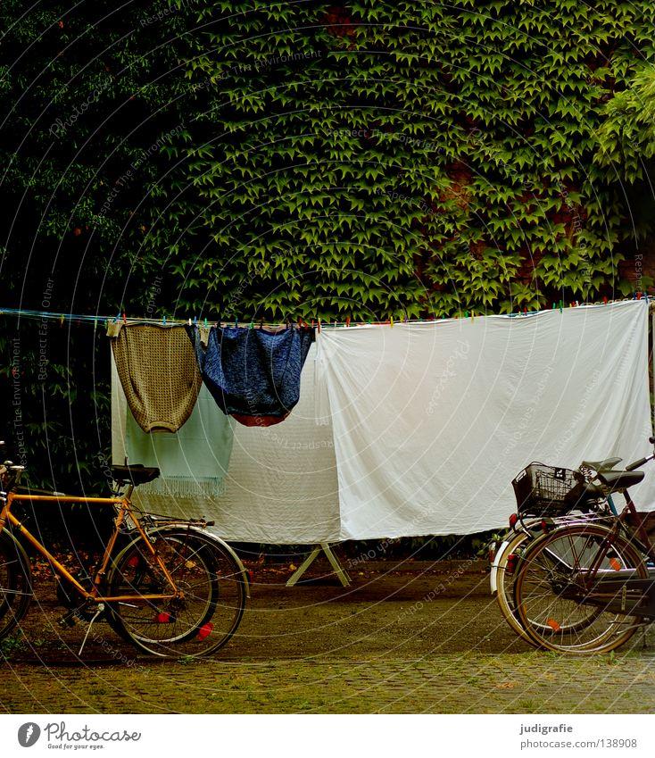 Waschtag Wäsche Wäscheleine Fahrrad Hinterhof Bettlaken Jacke Sauberkeit Sommer trocken trocknen Farbe Bekleidung Häusliches Leben festhalten Bauernhof