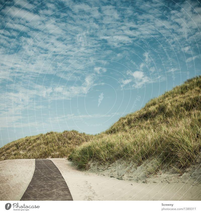 Wie weit ist es noch? Himmel Natur Ferien & Urlaub & Reisen Pflanze Sommer Meer Landschaft ruhig Wolken Strand Gras Küste Zufriedenheit Tourismus Erde Idylle