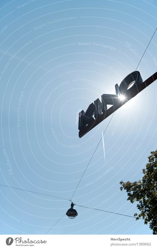 KINO Wien Stadt Metall Schriftzeichen Schilder & Markierungen blau grau Kino Leuchtreklame Straßenbeleuchtung Lampe Baumkrone Farbfoto Gedeckte Farben