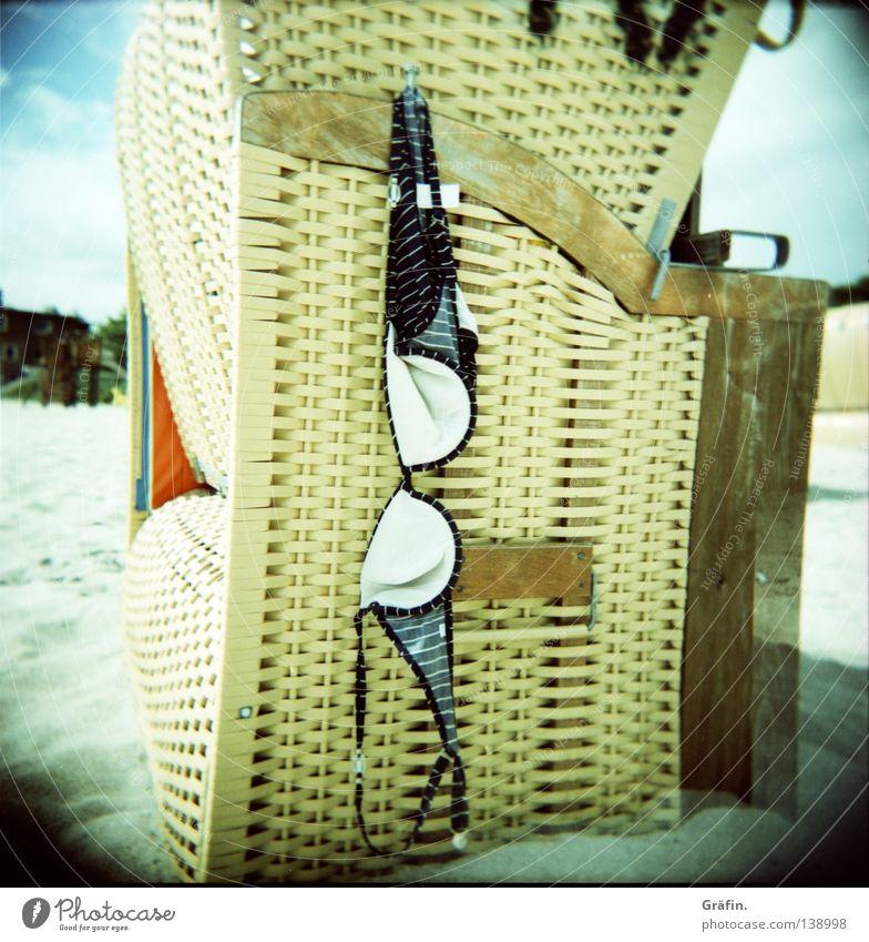 Elefantensonnenbrille Sonne Meer Sommer Strand Küste Sand Schwimmen & Baden Freizeit & Hobby Bekleidung Ostsee Bikini Top hängen Korb vergessen aufhängen