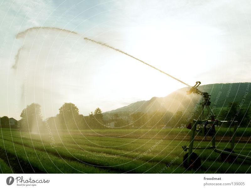 regenmacher Natur Wasser Himmel Baum Sonne Pflanze Sommer Wiese Gras Berge u. Gebirge Regen Feld nass Wassertropfen Kraft Macht