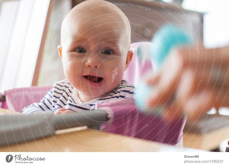 Häääää? Mensch feminin Baby 1 0-12 Monate Glatze lachen Fröhlichkeit Neugier Gefühle Freude Glück Zufriedenheit Lebensfreude Begeisterung Interesse lustig