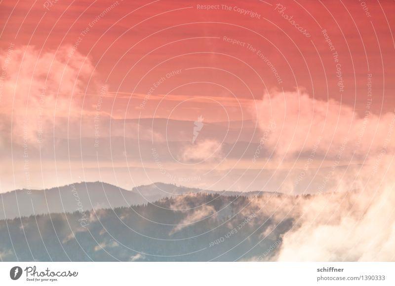 Traum | on Mars Landschaft Wolken Winter Schönes Wetter Nebel Eis Frost Schnee Wald Hügel Berge u. Gebirge orange rot Schwarzwald Ferne Aussicht abstrakt
