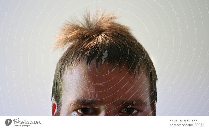 Surffrisur Haare & Frisuren nass feucht Augenbraue Kopf Gesicht Blick Wasser Haarschnitt Klippenspringer