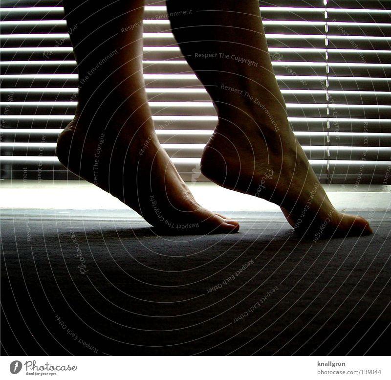Blaue Stunde... Frau dunkel feminin Beine Fuß hell Bodenbelag Barfuß Teppich Lamellenjalousie Jalousie Lichteinfall halbdunkel Zehenspitze