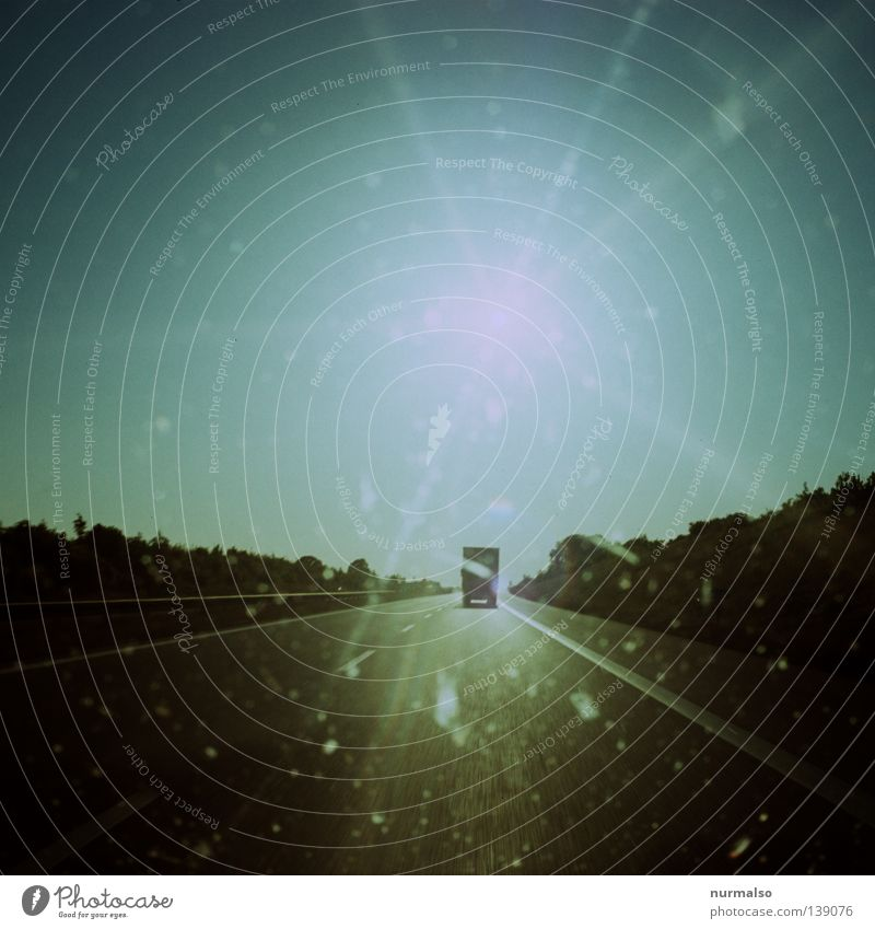schnell Weg fahren Wagen PKW Lastwagen Autobahn Asphalt Stechmücke Chitin Geschwindigkeit Sehnsucht Fernweh träumen Ferien & Urlaub & Reisen wegfahren analog