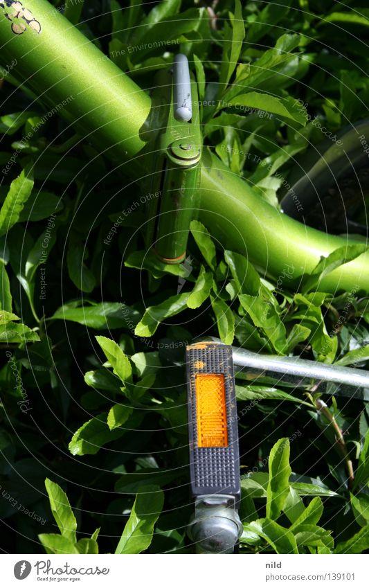 meins steht im busch Fahrrad grün Reflektor Klapprad Sträucher Sommer Verkehr Kontrast verstecket verstecken