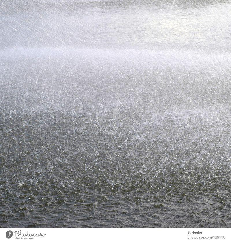 Wettervorhersage Natur Wasser Umwelt grau Regen nass Wassertropfen Unwetter Sturm Pfütze Klimawandel Blubbern Münster Flut entladen