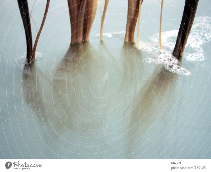 Tentakel Wasser blau Haare & Frisuren blond nass Bad Sauberkeit tauchen Reinigen hängen Waschen Schaum trüb Im Wasser treiben