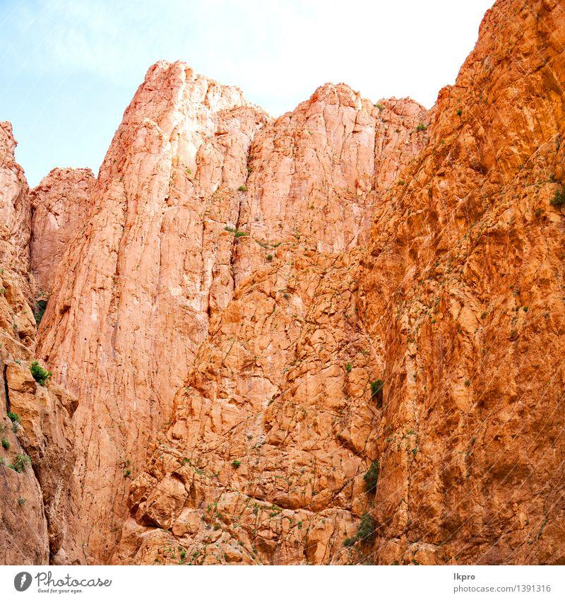 o Afrika und Fluss Sommer Berge u. Gebirge Landschaft Pflanze Sand Himmel Horizont Klima Baum Hügel Felsen Oase Dorf Gebäude alt Armut blau braun gelb Farbe