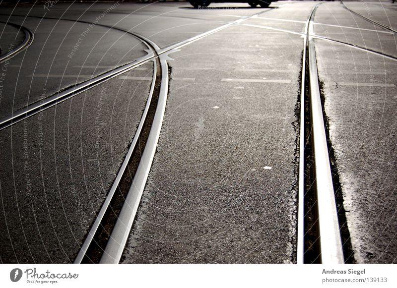 Zwischen den Spuren Dresden Gegenlicht Gleise Asphalt Straßenbahn Verkehr Fußgängerübergang Ampel Öffentlicher Personennahverkehr Verkehrswege PKW Mischung