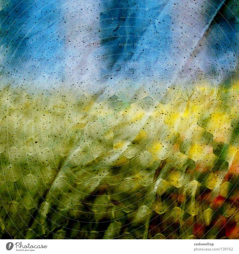 vorzelt vista Fenster abstrakt Bad gelb Camping Muster Furche Falte Sommer plastic window blau shower Musikfestival Ausflug Detailaufnahme corn Regen field