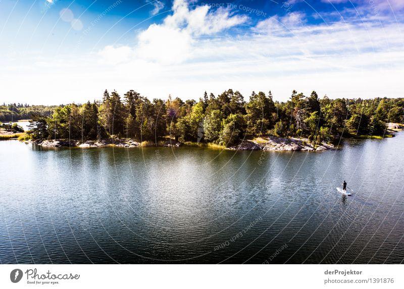 Stand up für die Schären Natur Ferien & Urlaub & Reisen Pflanze Sommer Landschaft Freude Tier Ferne Umwelt Gefühle Küste Sport Felsen Zufriedenheit Tourismus