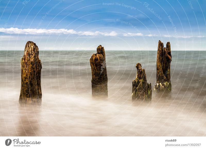 Buhne an der Ostseeküste Erholung Ferien & Urlaub & Reisen Strand Meer Wellen Landschaft Wasser Küste Holz blau Romantik Idylle Natur Tourismus Buhnen