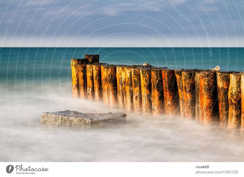 Buhne an der Ostsee Natur Ferien & Urlaub & Reisen Wasser Meer Landschaft Wolken Strand Winter kalt Küste Stein Felsen Wetter Tourismus Frost Jahreszeiten
