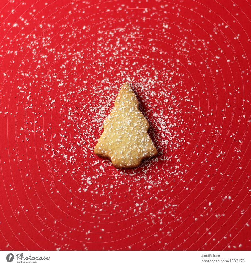 Oh, Tannenbaum im Schnee Weihnachten & Advent Baum rot Freude Winter Essen Lebensmittel Freizeit & Hobby Fröhlichkeit Ernährung Kreativität
