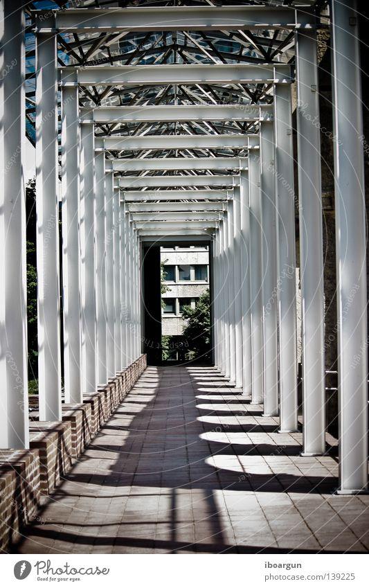 Englischer Garten München Licht Tunnel Schatten Stein Mauer Gang Architektur